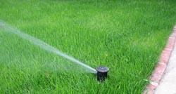 arrosage automatique d'une pelouse