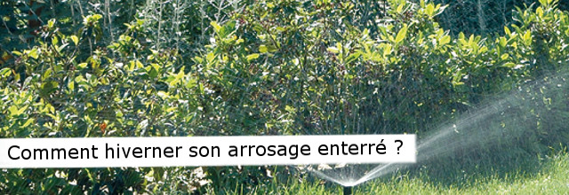 arrosage automatique hivernage
