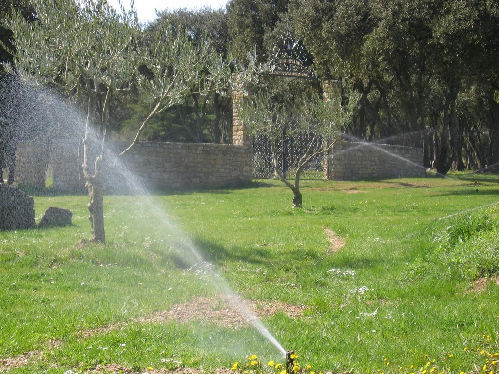 turbine arrosage pelouse